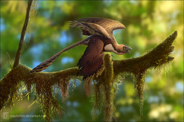 Changyuraptor yangi by Leaubellon