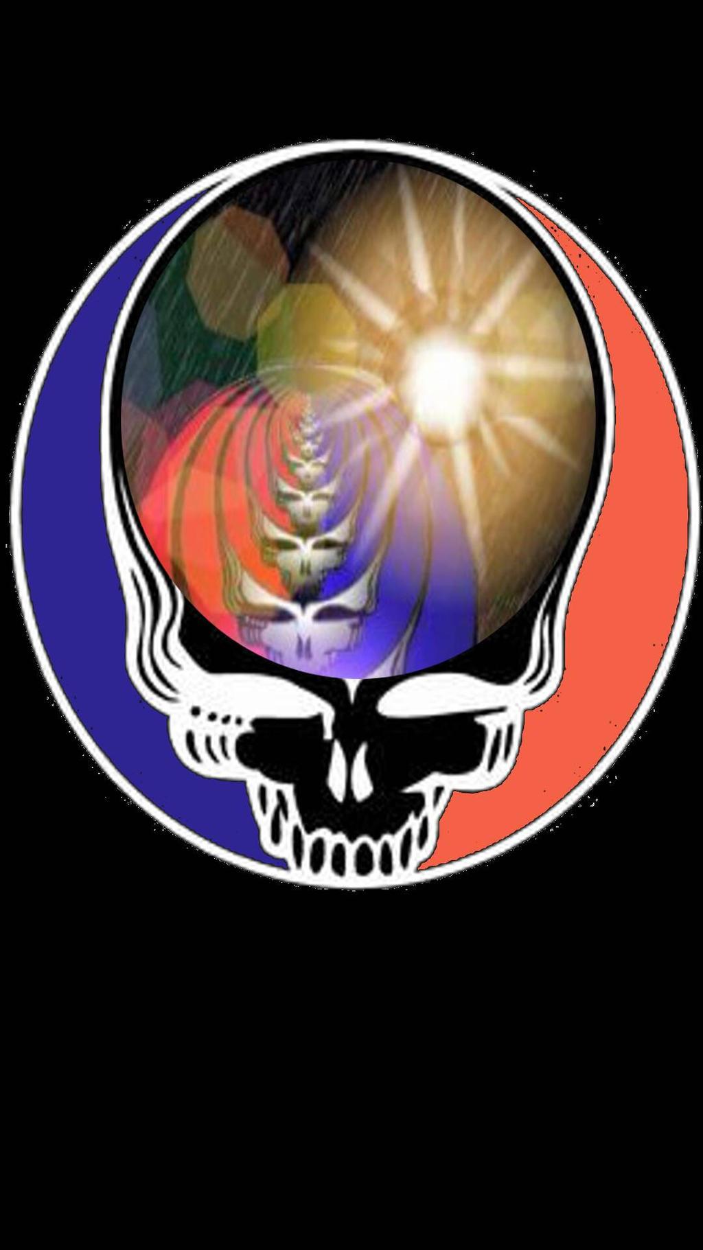 Grateful Dead  Black Skull  Steelie