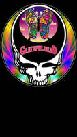 Grateful Dead Steal Your Face Butterfly