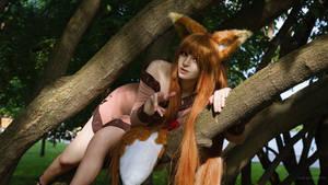 Holo Cosplay by Bizarre-Deer