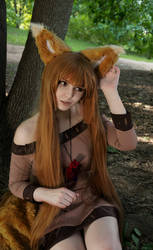 Holo Cosplay by Bizarre-Deer
