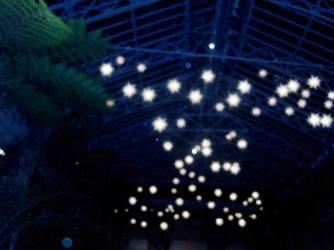 Starry Lights by CJSpooks