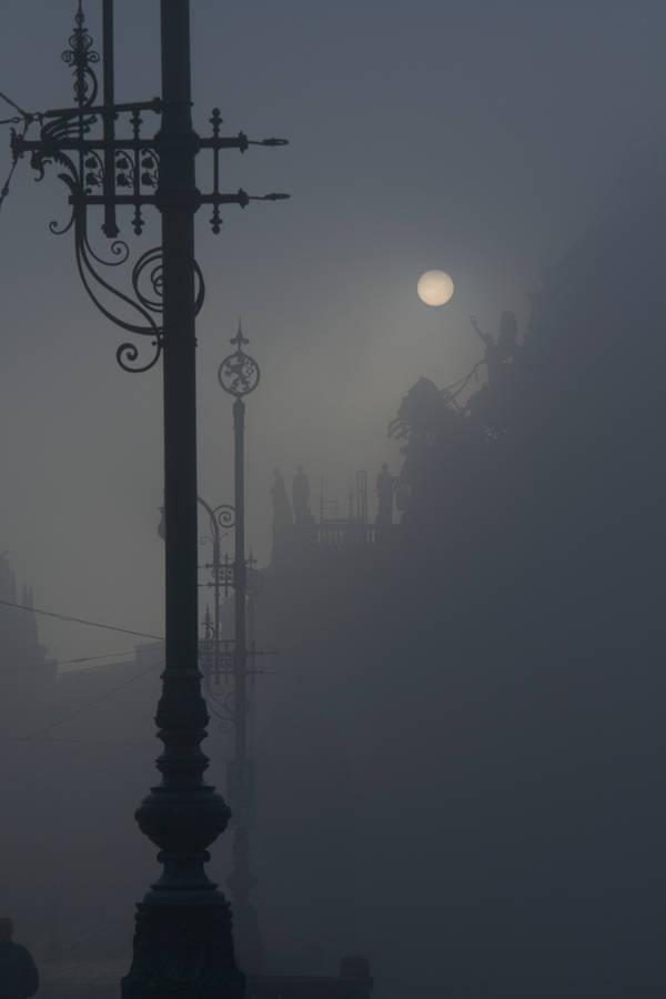 Misty by praCze