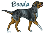 Catahoula by Bonz847