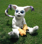 Gatomon Costume - old 2000