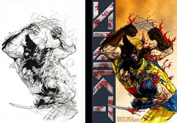 Wolverine Color Test Final Comp by CRSLozada