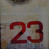 twenty three by davespertine