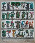 Forest encyclopiedia