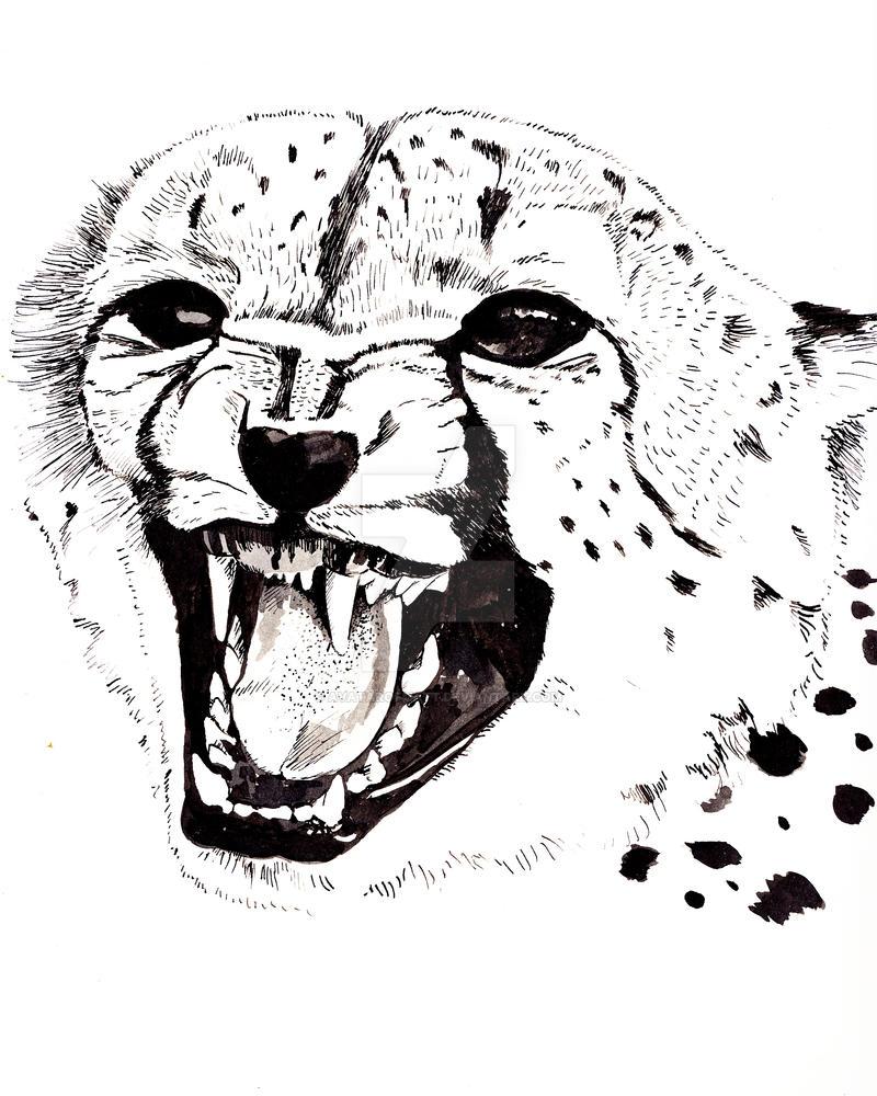 Cheetah by AvatarofMatt