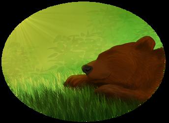 Bear by Ocny