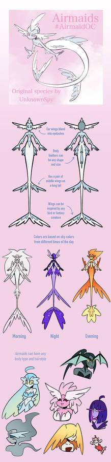 Airmaid Open Species Reference Sheet