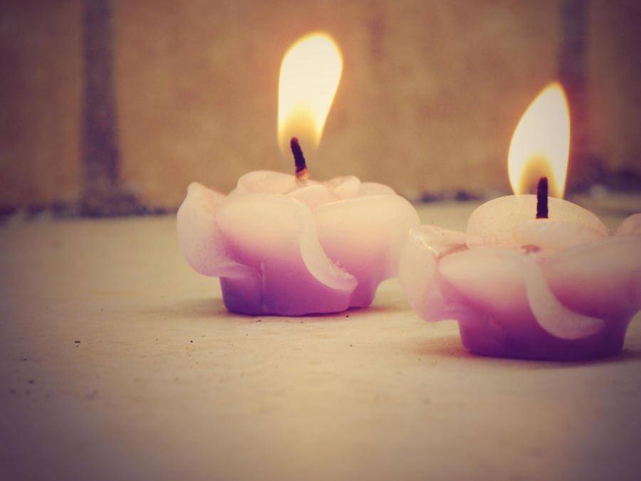 Plamen  svece Burning_flowers__by_touchedupfreak-d2z7yaf