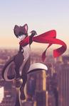 SKY-CAT