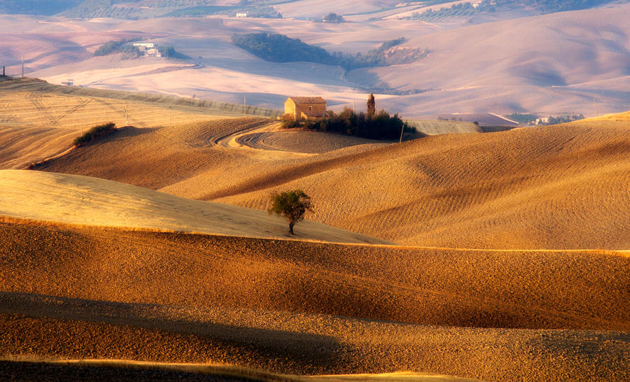 Tuscany in August by marco52