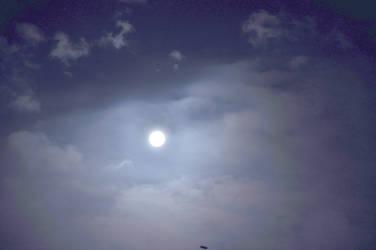 Wish of Night