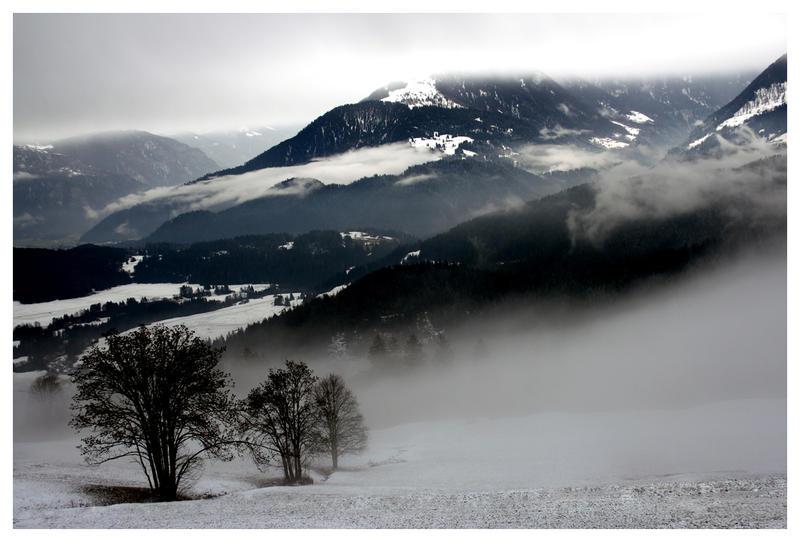 Fog by ComeWatchMyArt