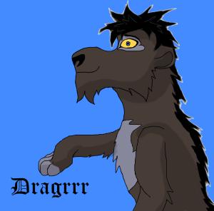 Dragrrr's Profile Picture