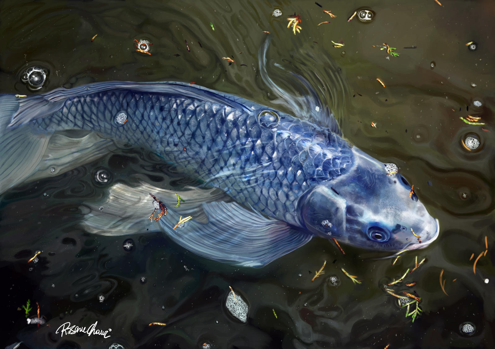 Blue koi digital painting by rosane chawi on deviantart for Koi fish art paintings