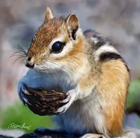 Squirrel Digital Painting