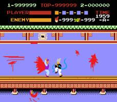 Garou in Kung Fu NES...