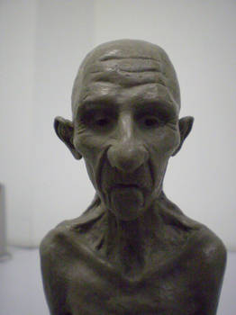 Old Woman - Face