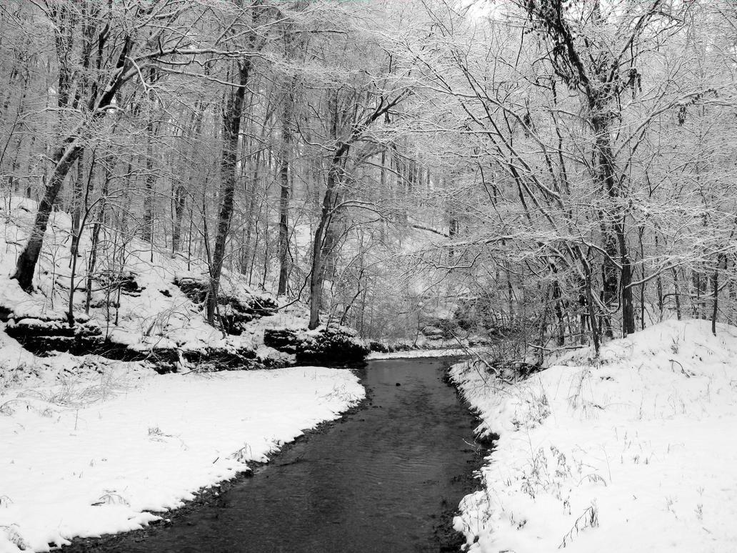Winter Stream by flowersteph