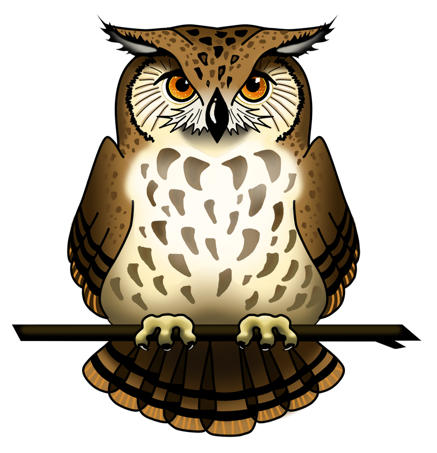owl png - DriverLayer Search Engine