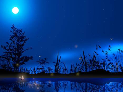 Nature night