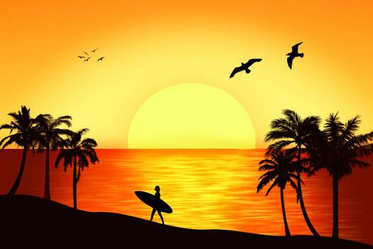 A Surfer life