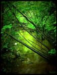 Gushing Green by Sarah--Lynne