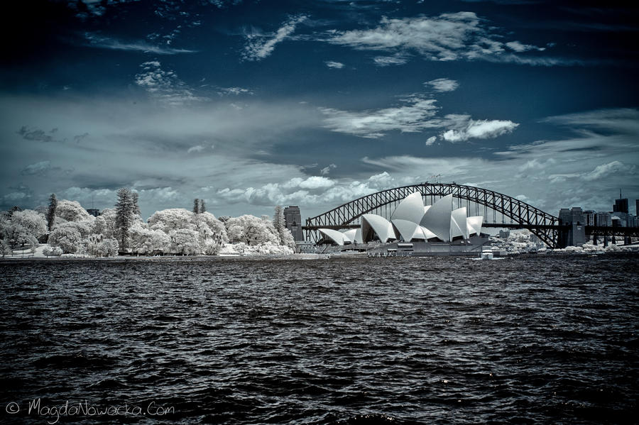 Sydney by schelly