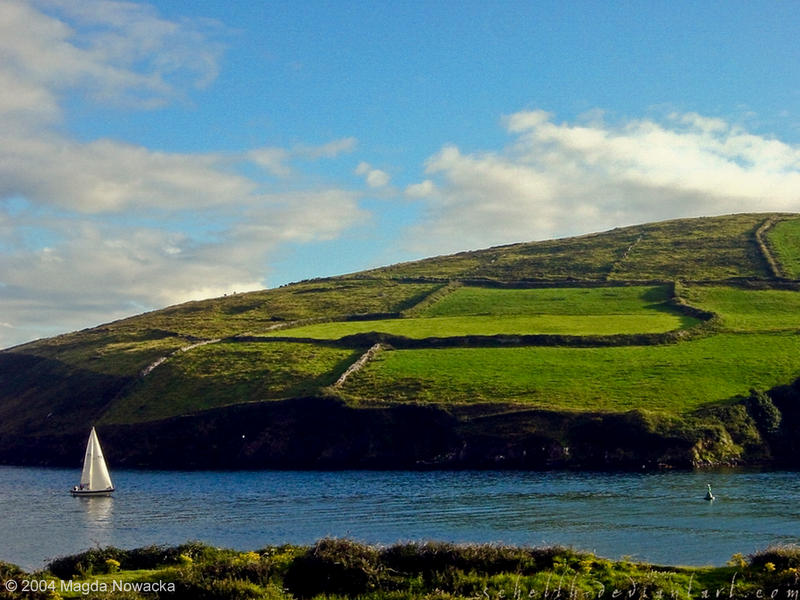 The sail-boat in Dingle Bay by schelly