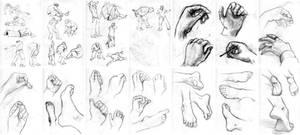 Figure Drawing VII