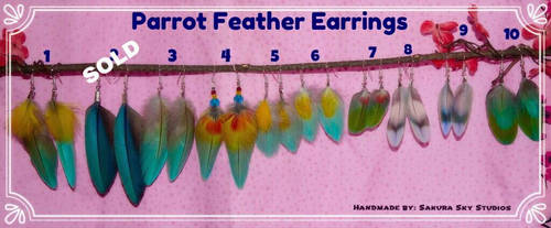 Parrot Feather Earrings for SALE!