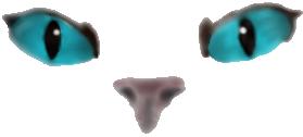 Cats - Through the eyes of Bluestar by iCaitlynn