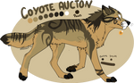 Coyote Auction! -CLOSED_