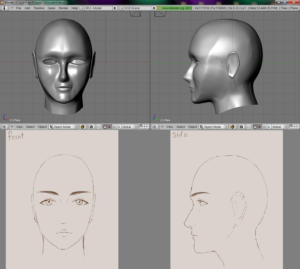 Blender Character Modeling 4 Of 10 : Blender model of a head by artisticgamemaster on deviantart