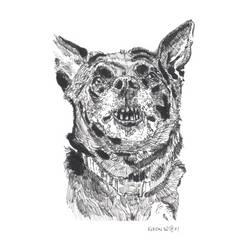 Doggo by kinow