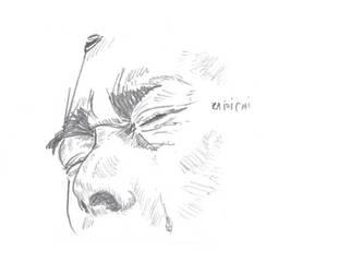 Zatoichi Crying (from A Tale of Zatoichi) by kinow
