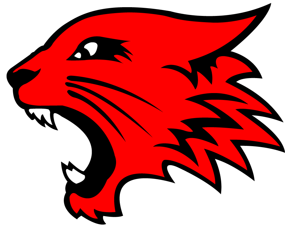 High School Musical Wildcats Logo