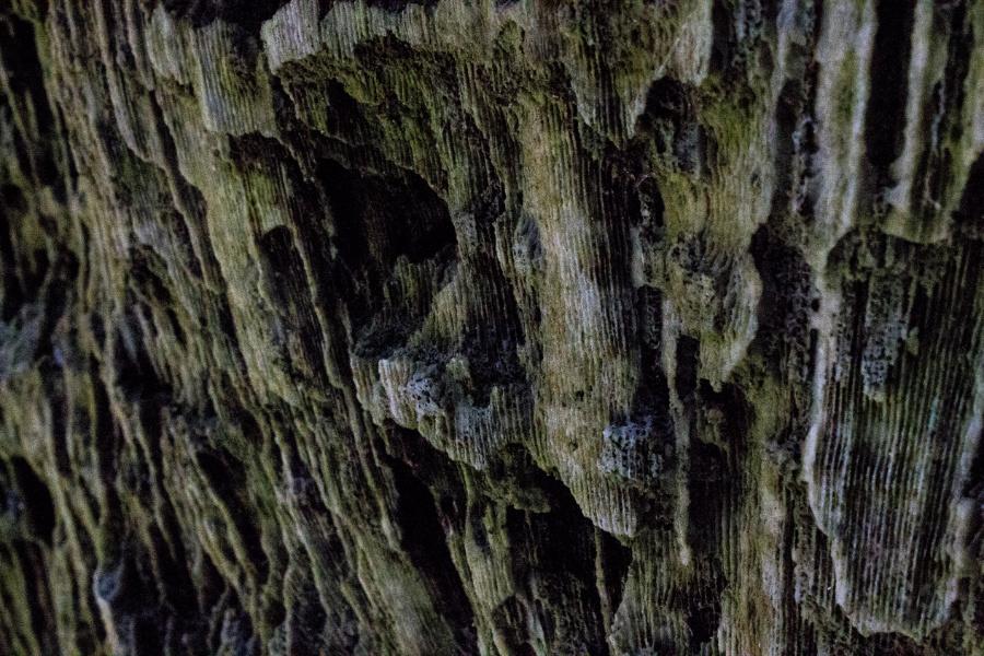 Climb The Rock Wall by xteabythemoon