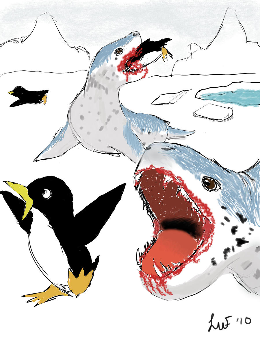 Leopard Seal Attack by kelpiebreeder on DeviantArt
