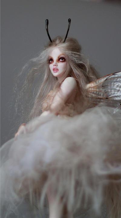 Cobweb1 by wingdthing