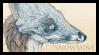 Snowmine Stamp
