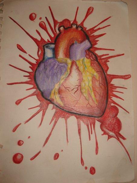 Human heart by defi-nation on DeviantArt