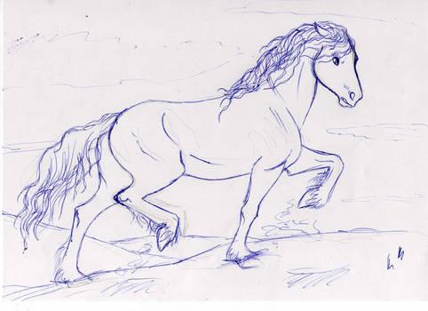 Warantan - The sketch