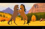 Stallions...