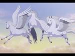 Pegasus Formation