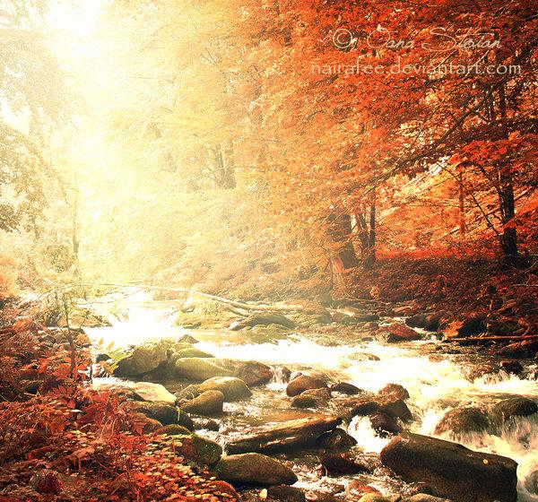 My Autumn by nairafee