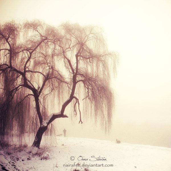 My Dreams by nairafee